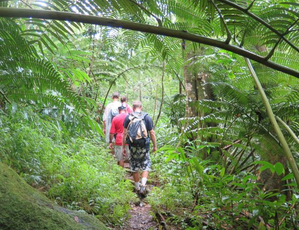 Active travel west hawaii hiking tours (5)
