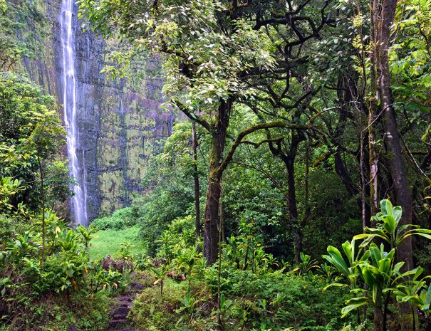 Active travel west hawaii hiking tours (7)